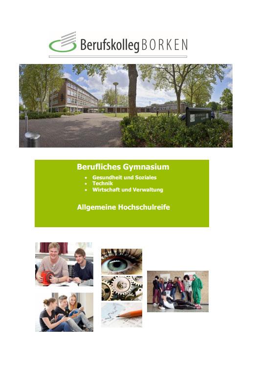 Flyer-Berufliches-Gymnasium-Borken-Allgemein