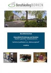 Flyer Berufsfachschule Fachrichtung Sozialassistent/in