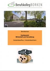 Flyer Berufsschule Industriekaufmann