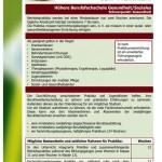 Informationsblatt Praktikum HBFG